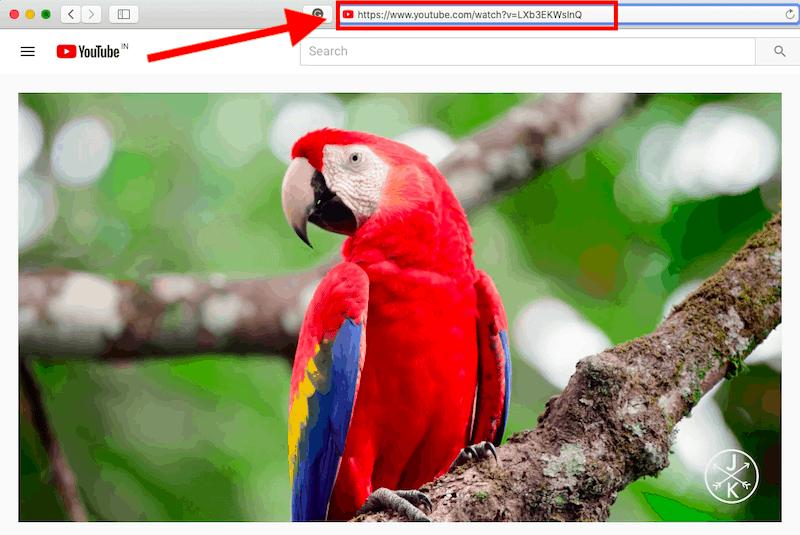Pobierz filmy z YouTube, skopiuj wklej adres URL