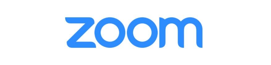 zoom logo 1